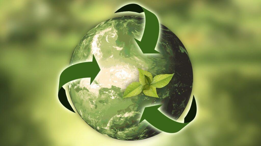 Le novità ecosostenibili del 2021