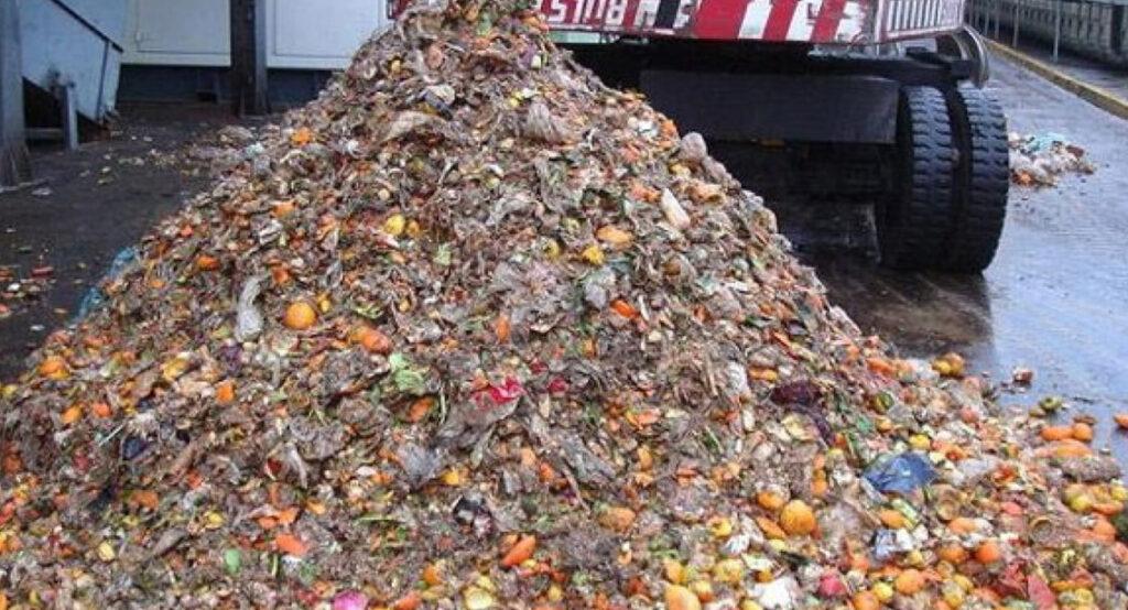 Un impianto a biomassa ricicla rifiuti organici e anche Co2