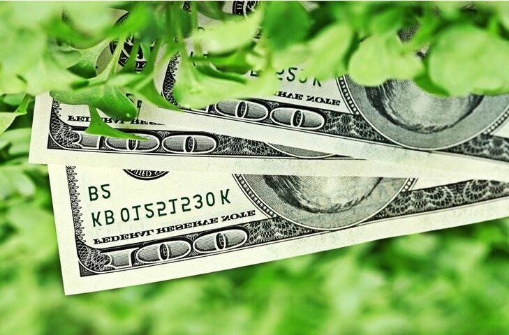 Mini-project financing per la decarbonizzazione