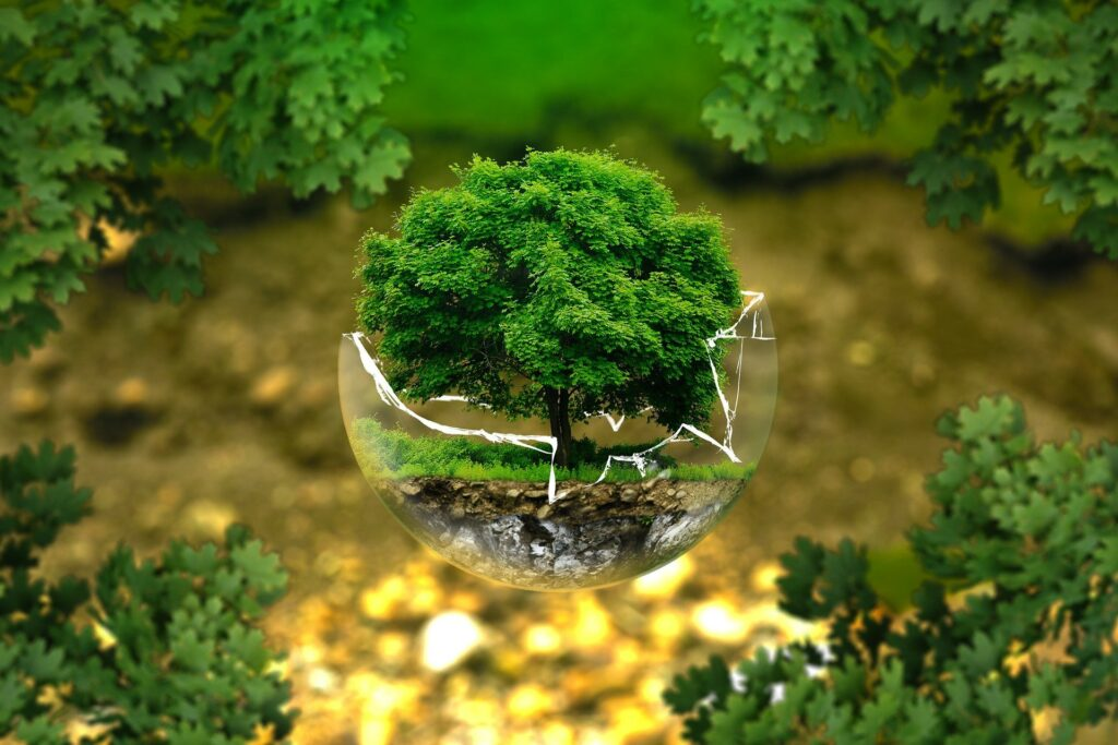 Giornata della Terra 2021: punto della situazione e come migliorare